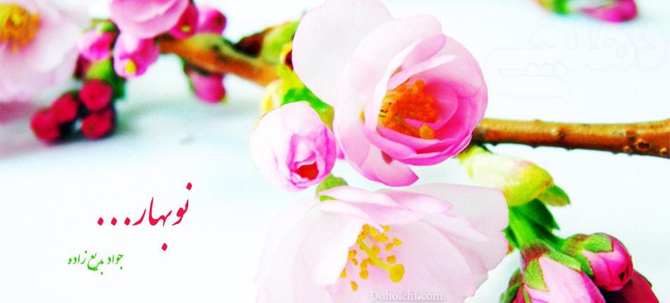 گل پونه نعنا پونه